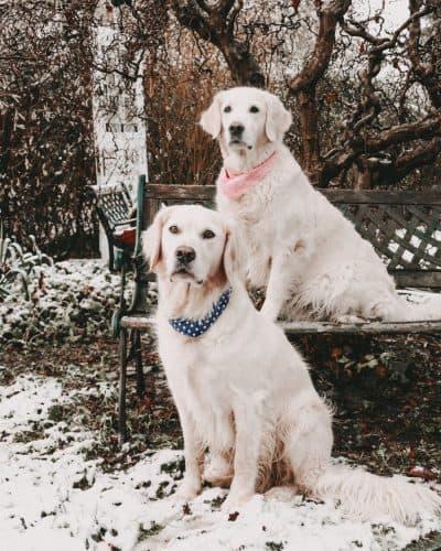 Nala und Kasper