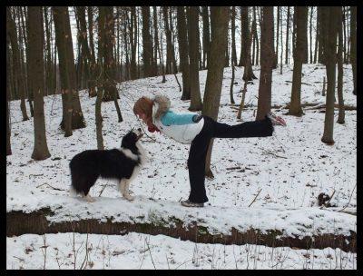 hundsfit titelbild