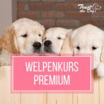 https://elopage.com/s/Hundeschule-Nusse/premium-welpenkurs