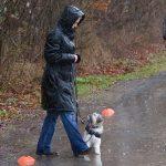 Hundeschule Basiskurs Hundeschule Nusse